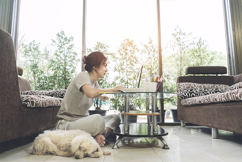 woman working from home in her living room with dog sitting next to her